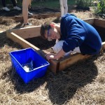 Matthew takes precision very seriously in the construction of the raised garden beds.